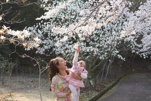 2009年4月6日_お花見6