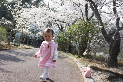 2009年4月6日_お花見4
