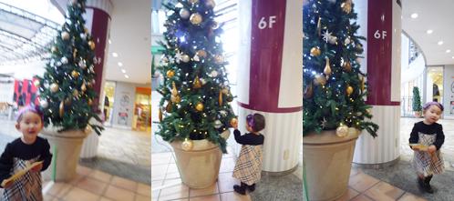 クリスマスツリー20091206